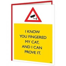 Warning Cards - Cat Fingerer!