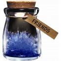 Crystal Wish Flower - Friends