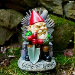 Game Of Gnomes - Gnome