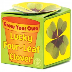Grow Your Own Good Luck - Four Leaf Clover