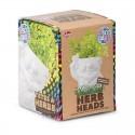 Herb Heads - Disco Dave